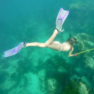 snorkeling spearfishing for grouper hogfish lionfish eleuthera harbour island bahamas girl in pink bikini blue water purple fins