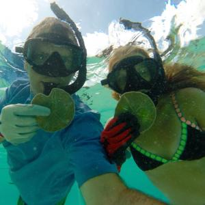 snorkeling for sand dollars bahamas eleuthera marsh harbour treasure cay father daughter happy family